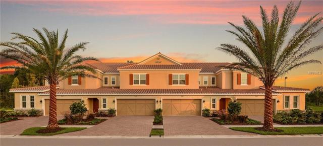 12315 Terracina Chase Court #47, Tampa, FL 33625 (MLS #T3103896) :: The Duncan Duo Team
