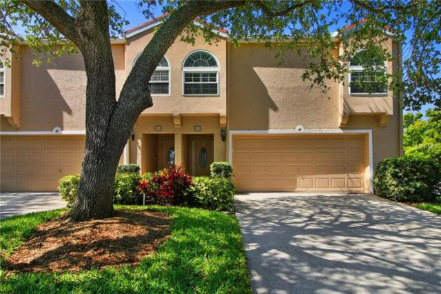 663 Malta Court NE, St Petersburg, FL 33703 (MLS #T3104234) :: The Duncan Duo Team