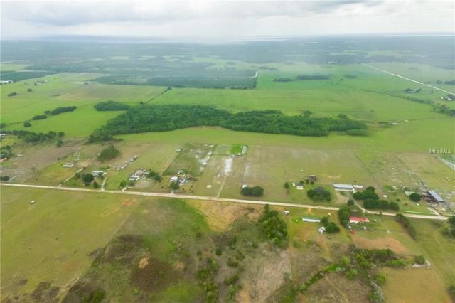 Meadow Way, Fort Meade, FL 33841 (MLS #T3104421) :: Dalton Wade Real Estate Group