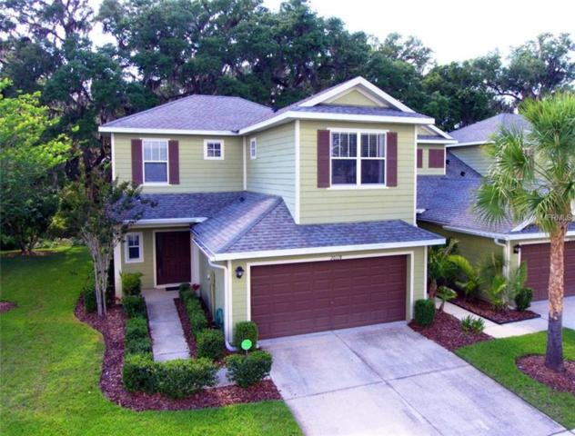 20118 Indian Rosewood Drive, Tampa, FL 33647 (MLS #T3104525) :: The Duncan Duo Team