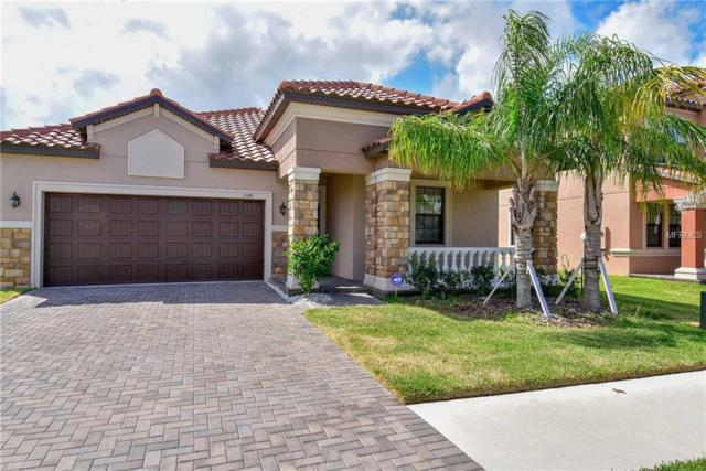 13141 Green Violet Drive, Riverview, FL 33579 (MLS #T3104570) :: Lovitch Realty Group, LLC