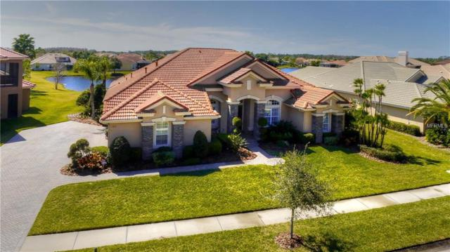 11816 Shire Wycliffe Court, Tampa, FL 33626 (MLS #T3104585) :: The Duncan Duo Team