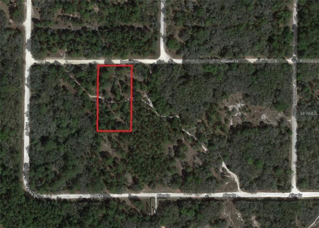 Rosehill Drive, Webster, FL 33597 (MLS #T3104906) :: Team Pepka