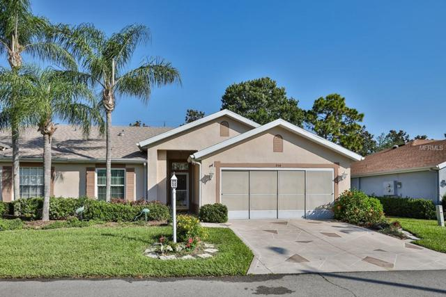 934 Villeroy Greens Drive #11, Sun City Center, FL 33573 (MLS #T3104909) :: Team Bohannon Keller Williams, Tampa Properties