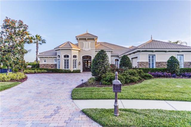 11828 Shire Wycliffe Court, Tampa, FL 33626 (MLS #T3104921) :: The Duncan Duo Team