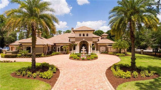 18551 Council Crest Drive, Odessa, FL 33556 (MLS #T3104937) :: The Duncan Duo Team