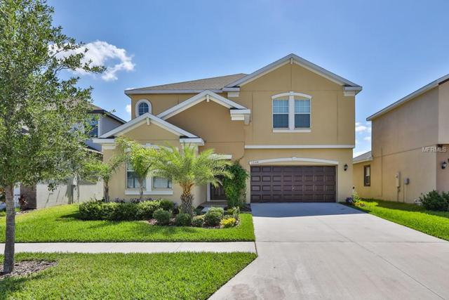 12304 Ballentrae Forest Drive, Riverview, FL 33579 (MLS #T3105229) :: The Duncan Duo Team