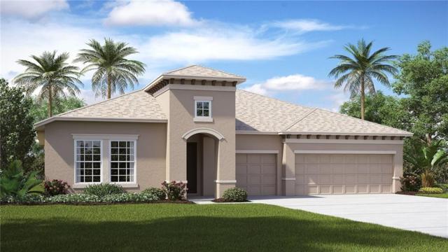 11737 Sunburst Marble Drive, Riverview, FL 33579 (MLS #T3105453) :: The Duncan Duo Team