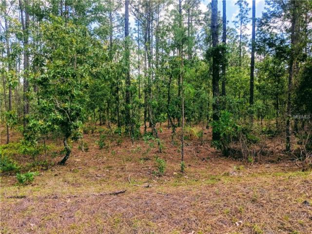 0 NW Foxglove Lane, Dunnellon, FL 34431 (MLS #T3105535) :: The Duncan Duo Team