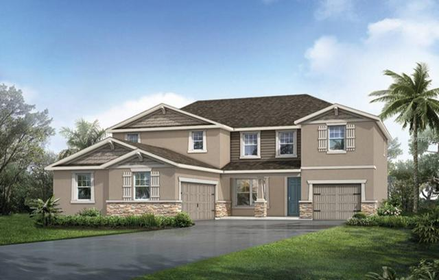10712 Planer Picket Drive #132, Riverview, FL 33578 (MLS #T3105646) :: The Duncan Duo Team