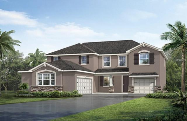 Address Not Published, Riverview, FL 33578 (MLS #T3105656) :: The Duncan Duo Team