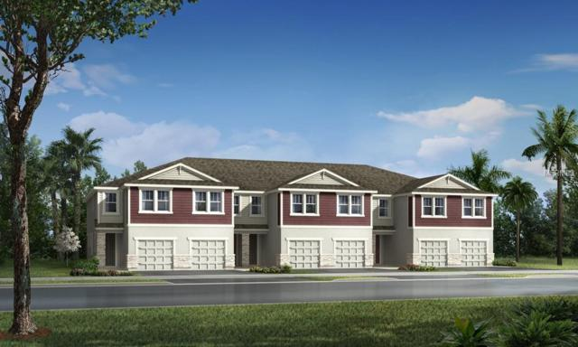 11744 Cambium Crown Drive 234 F, Riverview, FL 33569 (MLS #T3105695) :: The Duncan Duo Team