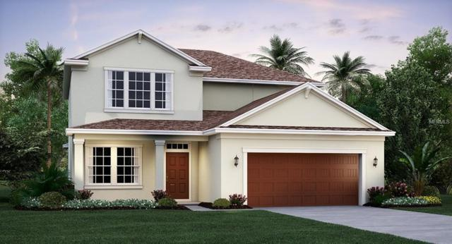 4740 Coachford Drive, Wesley Chapel, FL 33543 (MLS #T3105712) :: The Duncan Duo Team