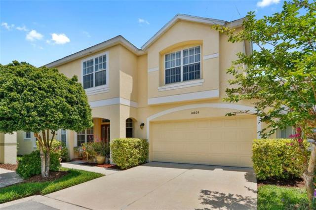 10603 Marlington Place, Tampa, FL 33626 (MLS #T3105837) :: The Duncan Duo Team