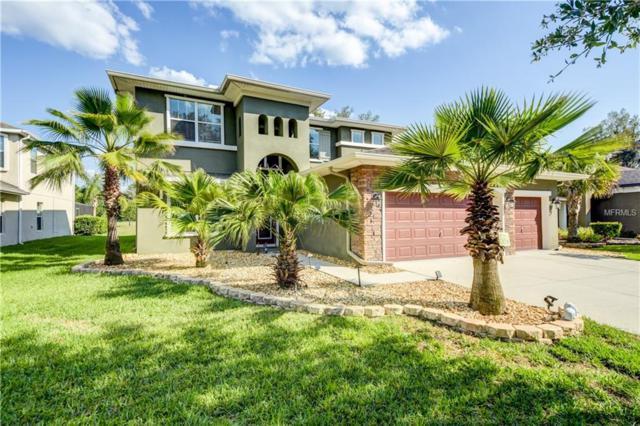 15725 Starling Water Drive, Lithia, FL 33547 (MLS #T3105858) :: The Duncan Duo Team
