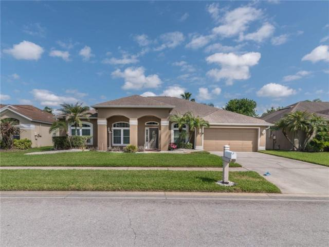 28743 Crooked Stick Court, Wesley Chapel, FL 33543 (MLS #T3105918) :: The Duncan Duo Team