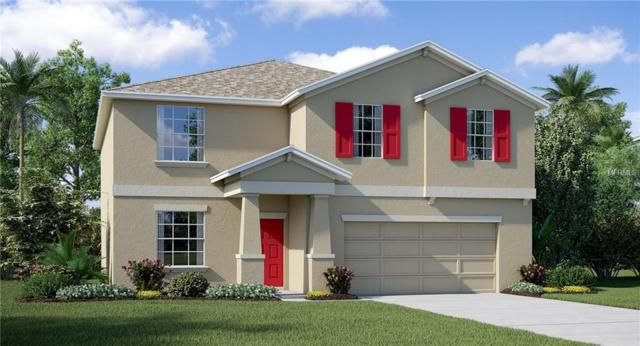 10266 Strawberry Tetra Drive, Riverview, FL 33578 (MLS #T3106106) :: The Duncan Duo Team