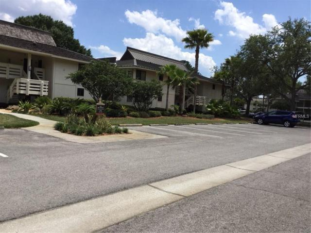 5020 Mill Pond Road #3162, Wesley Chapel, FL 33543 (MLS #T3106138) :: The Duncan Duo Team