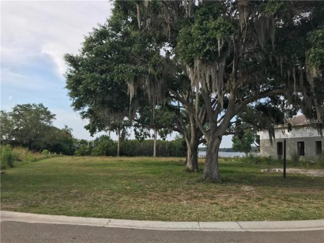 Boesch Drive, Palm Harbor, FL 34684 (MLS #T3106319) :: Rabell Realty Group