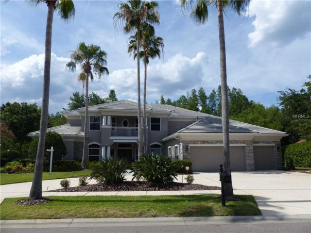 9822 Emerald Links Drive, Tampa, FL 33626 (MLS #T3106345) :: The Duncan Duo Team