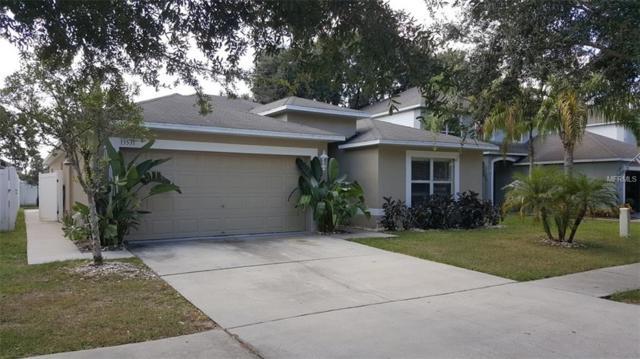 13531 Copper Head Drive, Riverview, FL 33569 (MLS #T3106346) :: The Duncan Duo Team