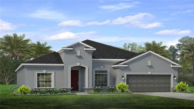 11748 Sunburst Marble Drive, Riverview, FL 33579 (MLS #T3106451) :: The Duncan Duo Team