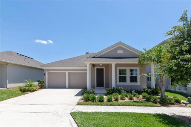 4931 Wildwood Pointe Road, Winter Garden, FL 34787 (MLS #T3106457) :: The Duncan Duo Team