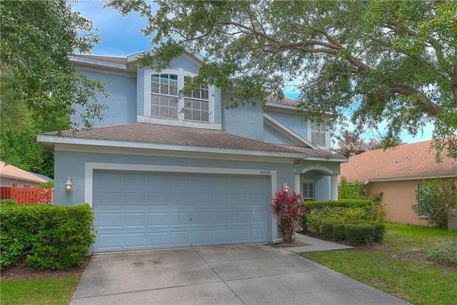 10009 Bridgeton Drive, Tampa, FL 33626 (MLS #T3106468) :: The Duncan Duo Team