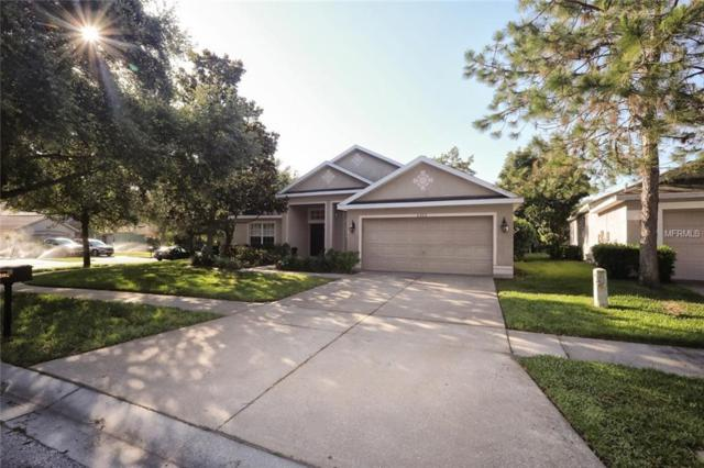 6202 Whimbrelwood Drive, Lithia, FL 33547 (MLS #T3106596) :: The Duncan Duo Team