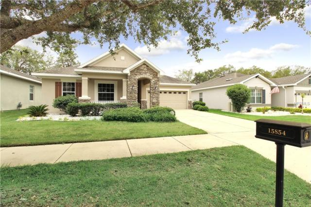 15854 Starling Water Drive, Lithia, FL 33547 (MLS #T3106664) :: The Duncan Duo Team