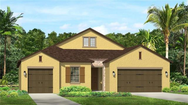 29424 Picana Lane, Wesley Chapel, FL 33543 (MLS #T3106759) :: The Duncan Duo Team