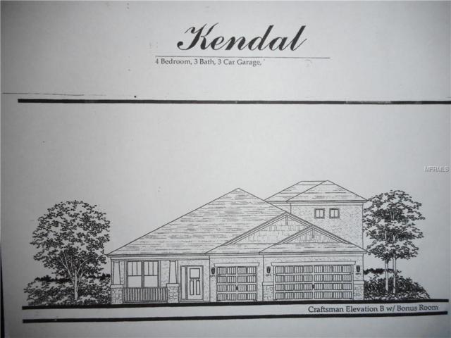 27261 Hawks Nest Circle, Wesley Chapel, FL 33544 (MLS #T3106838) :: The Duncan Duo Team