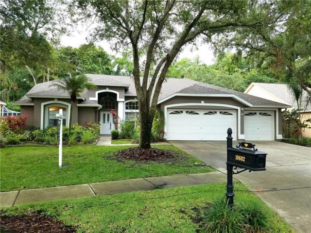 10602 Chambers Drive, Tampa, FL 33626 (MLS #T3106865) :: O'Connor Homes