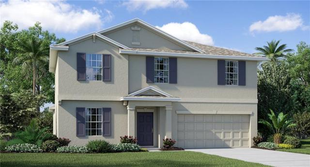 10302 Strawberry Tetra Drive, Riverview, FL 33578 (MLS #T3107088) :: The Duncan Duo Team