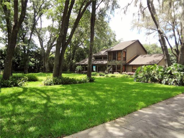 2402 Pinecrest Drive, Lutz, FL 33549 (MLS #T3107268) :: The Duncan Duo Team