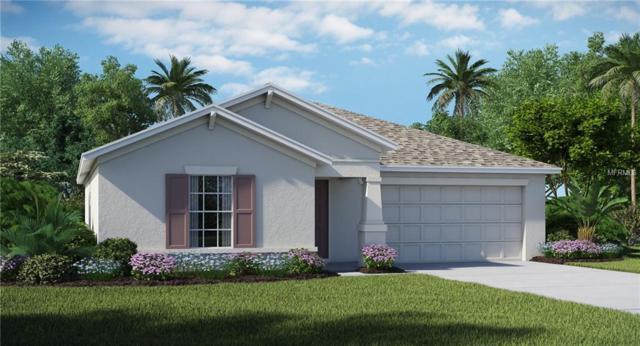 9658 Sage Creek Drive, Ruskin, FL 33573 (MLS #T3107278) :: The Duncan Duo Team