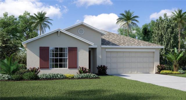 9704 Sage Creek Drive, Ruskin, FL 33573 (MLS #T3107288) :: The Duncan Duo Team