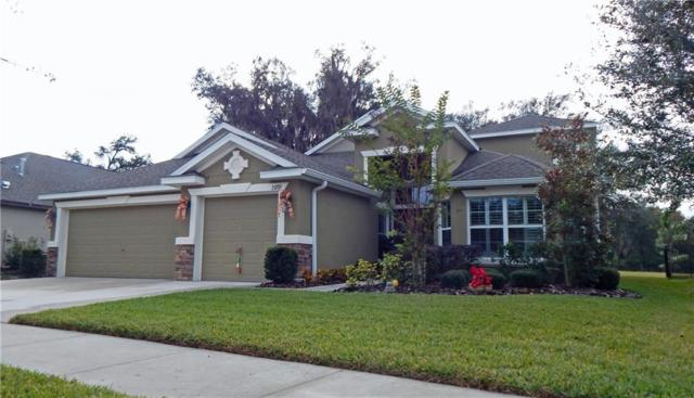 15719 Starling Water Drive, Lithia, FL 33547 (MLS #T3107407) :: The Duncan Duo Team