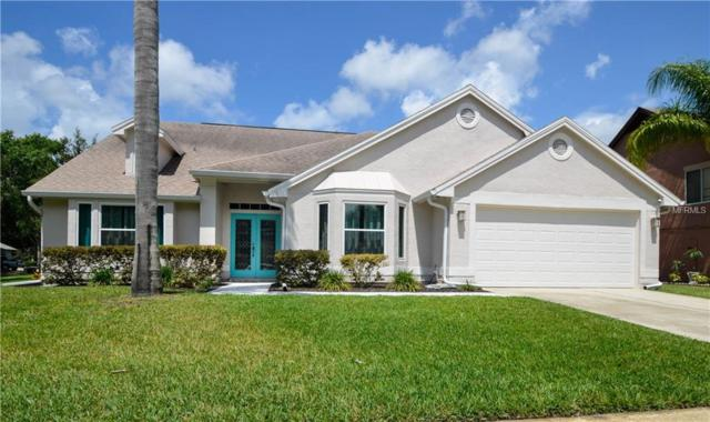 14902 Perriwinkle Place, Tampa, FL 33625 (MLS #T3107457) :: O'Connor Homes