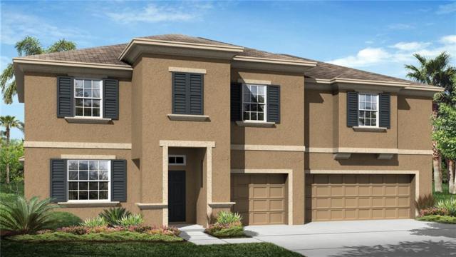 33439 Azalea Ridge Drive, Wesley Chapel, FL 33545 (MLS #T3107479) :: The Duncan Duo Team