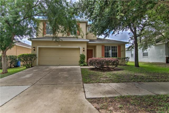 223 Fern Gulley Drive, Seffner, FL 33584 (MLS #T3107480) :: Arruda Family Real Estate Team