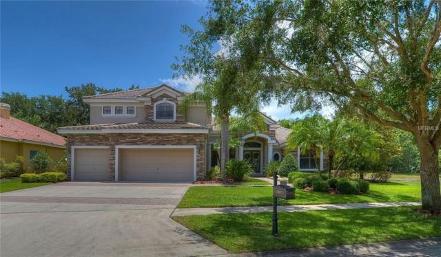 9807 Tree Tops Lake Road, Tampa, FL 33626 (MLS #T3107640) :: Premium Properties Real Estate Services