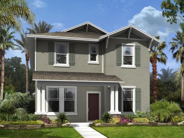 8118 Summerlake Groves Street, Winter Garden, FL 34787 (MLS #T3107662) :: The Duncan Duo Team