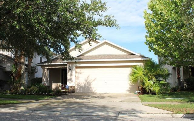 18048 Glastonbury Lane, Land O Lakes, FL 34638 (MLS #T3107674) :: Arruda Family Real Estate Team