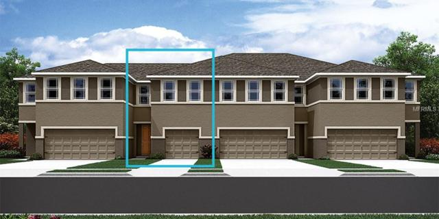 17831 Althea Blue Place #93, Lutz, FL 33558 (MLS #T3107725) :: The Duncan Duo Team