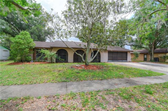 1034 Lake Haven Drive, Lutz, FL 33559 (MLS #T3107756) :: The Duncan Duo Team