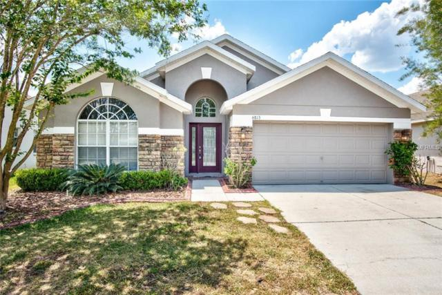 6813 Runner Oak Drive, Wesley Chapel, FL 33545 (MLS #T3107822) :: The Duncan Duo Team