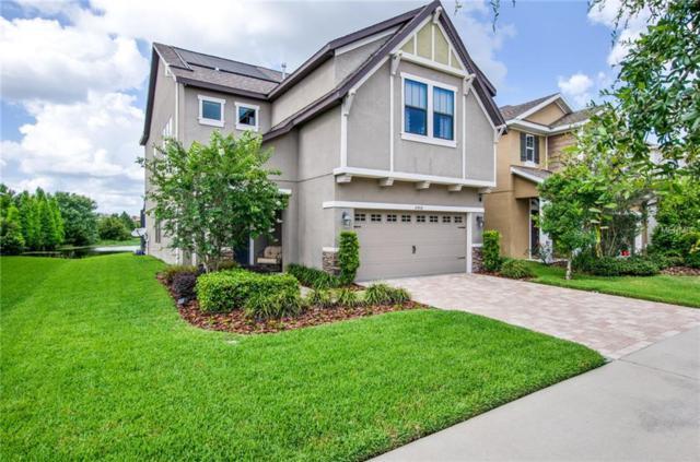 16408 Egret Crossing Lane, Lithia, FL 33547 (MLS #T3107864) :: Arruda Family Real Estate Team