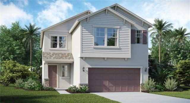 9847 Ivory Drive, Ruskin, FL 33573 (MLS #T3107879) :: The Duncan Duo Team