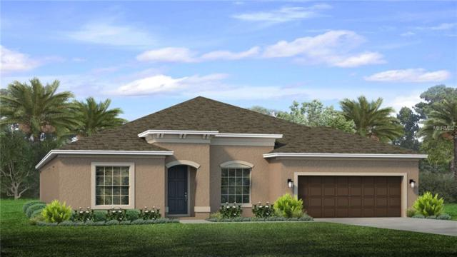 11940 Sunburst Marble Drive, Riverview, FL 33579 (MLS #T3107914) :: The Duncan Duo Team